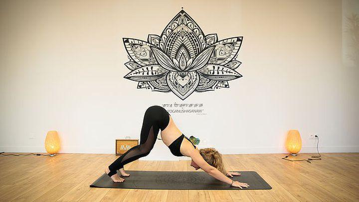 Yoga Dynamique (Vinyasa) - Débutants/Intermédiaires