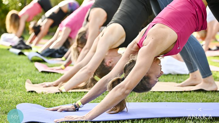 Yoga sur l'herbe au Clos des Lys
