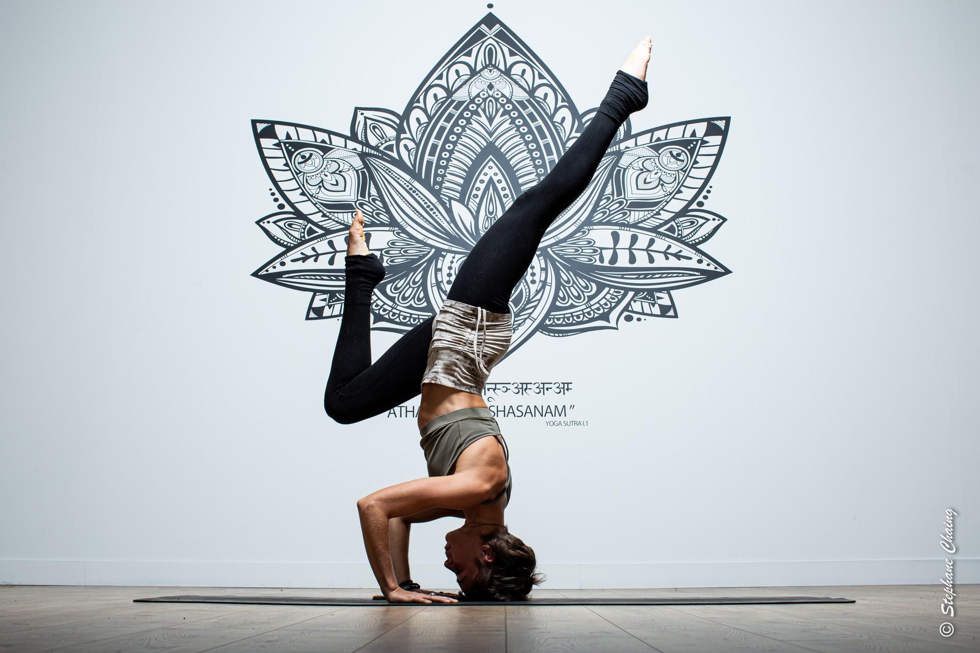 Yoga Dynamique (Vinyasa) - Débutants